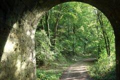 在铁路下的Tunel 免版税库存图片