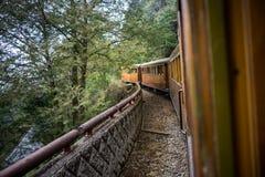 在铁路森林的老火车 免版税图库摄影