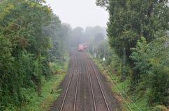 在铁路的火车在森林里 免版税图库摄影