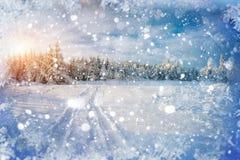 在铁路路附近的城市发光雪星期日对冬天木头 与holida的美好的颜色高res例证 免版税库存图片