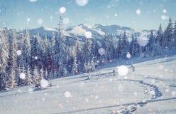 在铁路路附近的城市发光雪星期日对冬天木头 与holida的美好的颜色高res例证 库存照片