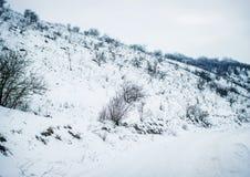 在铁路路附近的城市发光雪星期日对冬天木头 户外横向倾斜雪体育运动冬天 库存图片