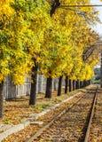在铁路附近的晴朗的秋天 图库摄影