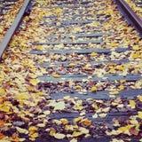 在铁轨的秋天叶子 免版税库存图片