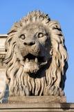 在铁锁式桥梁的狮子雕塑在布达佩斯 免版税库存照片