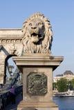 在铁锁式桥梁的狮子雕塑在布达佩斯 免版税库存图片