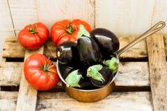 在铜浸染工的微型茄子和在被风化的木箱子的成熟raff蕃茄 免版税库存照片