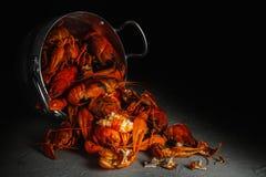 在铝平底锅的许多小龙虾在黑暗的背景 库存照片