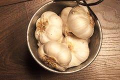 在铝罐的大蒜bulbes 库存图片
