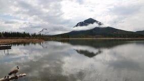 在银朱的湖的田园诗生活 影视素材