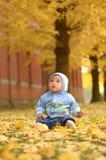 在银杏树树叶子中的男婴在秋天 免版税图库摄影