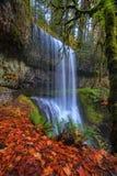 在银的更低的南部秋天下跌国家公园 免版税库存图片
