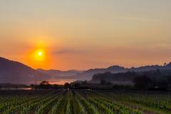 在银色湖芭达亚的金黄日落 免版税图库摄影