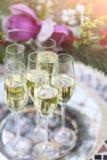 在银色盘子的香宾玻璃 免版税图库摄影