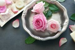 在银色碗的玫瑰在灰色桌上 免版税库存照片