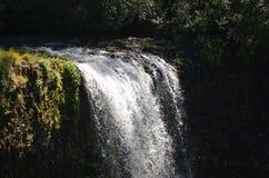 在银色秋天公园的南秋天,俄勒冈 免版税库存图片