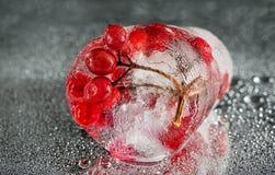 在银色背景的水中结冰的莓果 免版税图库摄影