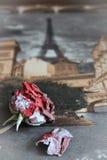 在银,明信片,纹理的红色玫瑰 库存照片