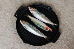 在铸铁煎锅的新鲜的沙丁鱼 免版税库存图片