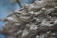 在链子和齿轮的泥 免版税库存照片