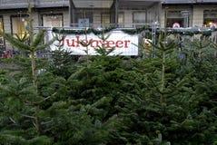 在销售中的圣诞树 库存照片