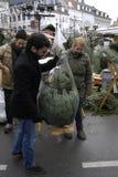 在销售中的圣诞树 免版税库存图片