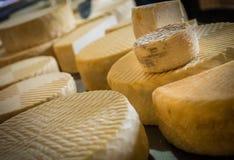 在销售中的山羊乳干酪 库存照片
