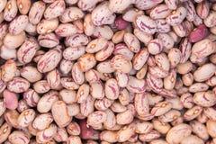 在销售中的干豆在市场上 图库摄影