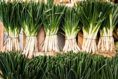 在销售额中的蔬菜 库存照片