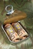 在锡罐的货币。 免版税库存图片