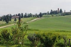 在锡耶纳省(托斯卡纳,意大利)的单行道路 免版税图库摄影
