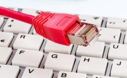 在键盘的网络缆绳 免版税图库摄影