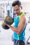 在锻炼期间,行使二头肌的一个英俊的年轻人的画象卷曲 库存照片
