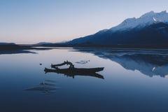 在镇静阿拉斯加风景的漂流木头 库存照片