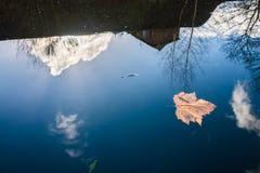 在镇静水的反射在伯明翰运河 库存图片