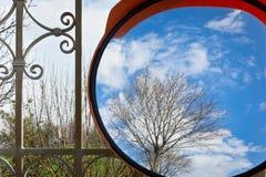 在镜子的春天-更加紧密 库存照片