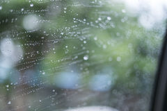 在镜子的雨珠 库存图片