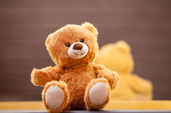 在镜子附近的玩具熊 库存照片
