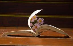 在长凳的书与在页的风 免版税库存照片