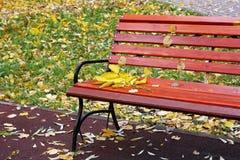 在长凳的叶子 免版税库存图片