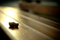 在长凳的木荷兰鞋子 库存照片
