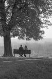 在长凳的浪漫夫妇就座 库存照片