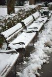 在长凳的雪 库存照片
