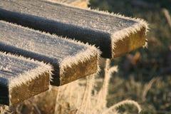 在长凳的冻针 免版税库存图片