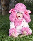 在长卷毛狗服装打扮的体贴的婴孩 免版税库存图片