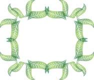 在长方形形状的绿色叶子传染媒介边界 库存图片
