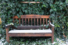 在长木凳和绿色叶子的第一雪 免版税库存图片