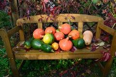 在长木凳的南瓜 免版税库存照片
