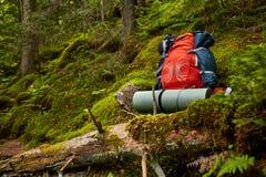 在长木凳的旅行背包在森林室外旅行癖项目 旅行、旅游业和野营的设备 库存图片