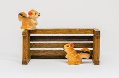 在长木凳的灰鼠Cerimic在公园 库存图片